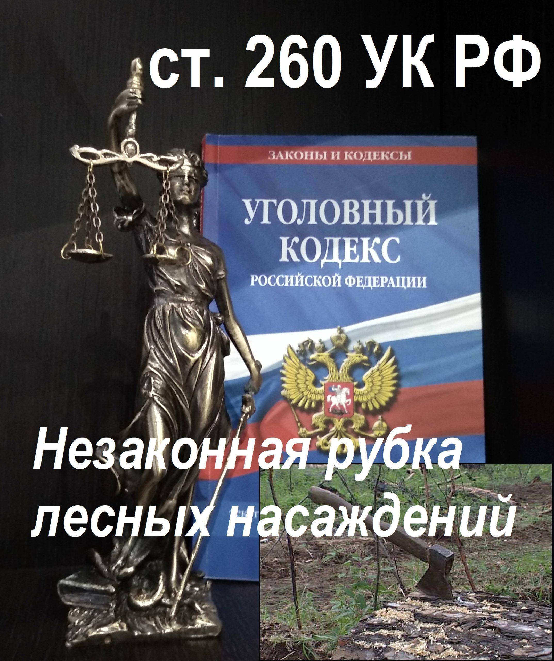 Защита по ст. 260 УК РФ Незаконная рубка лесных насаждений